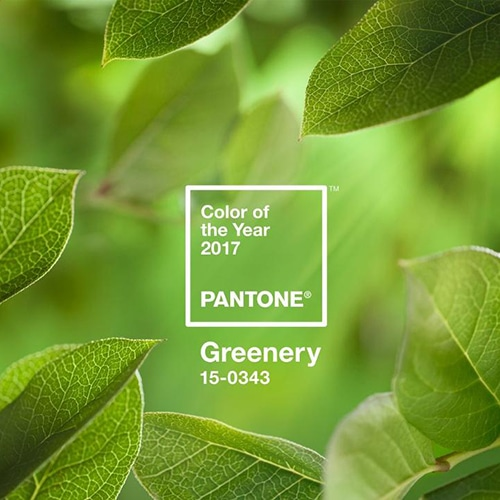 lusso Design di Lusso: i top trend del 2017 1483373444691 pantone color of the year 2017 greenery