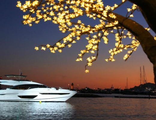 yachting festival cannes Cannes Yachting Festival 2018 yachting festival 520x400