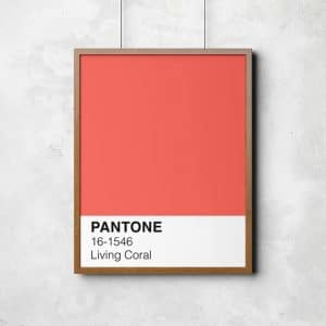 pantone living coral  Pantone 2019: il colore dell'anno sarà il Living Coral il 570xN