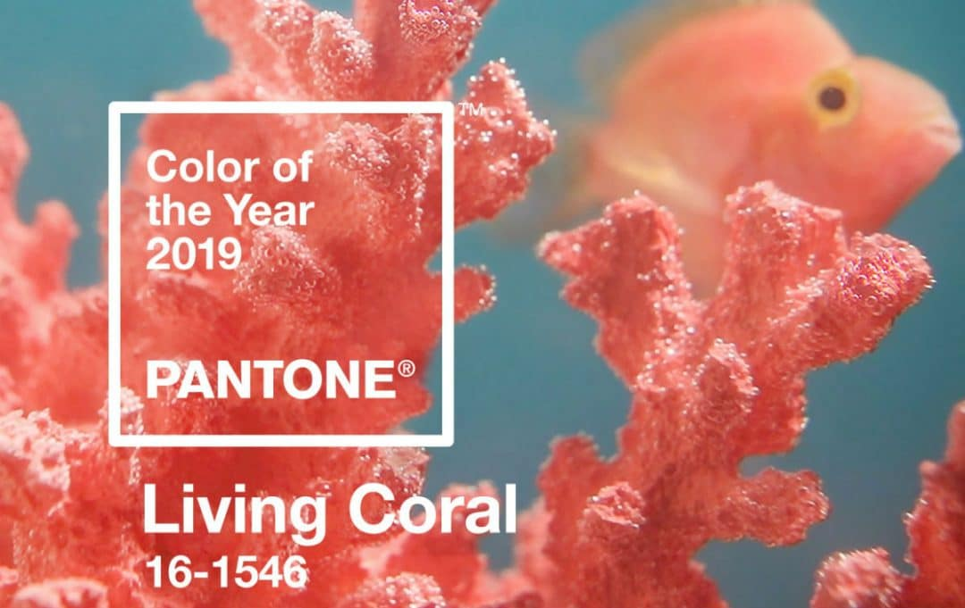 Pantone 2019: il colore dell'anno sarà il Living Coral pantone color of the year 2019 living coral banner mobile 1080x681