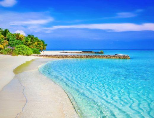 immobili di prestigio LIFESTYLE: IMMOBILI DI PRESTIGIO VISTA MARE beach 1824855 1920 520x400